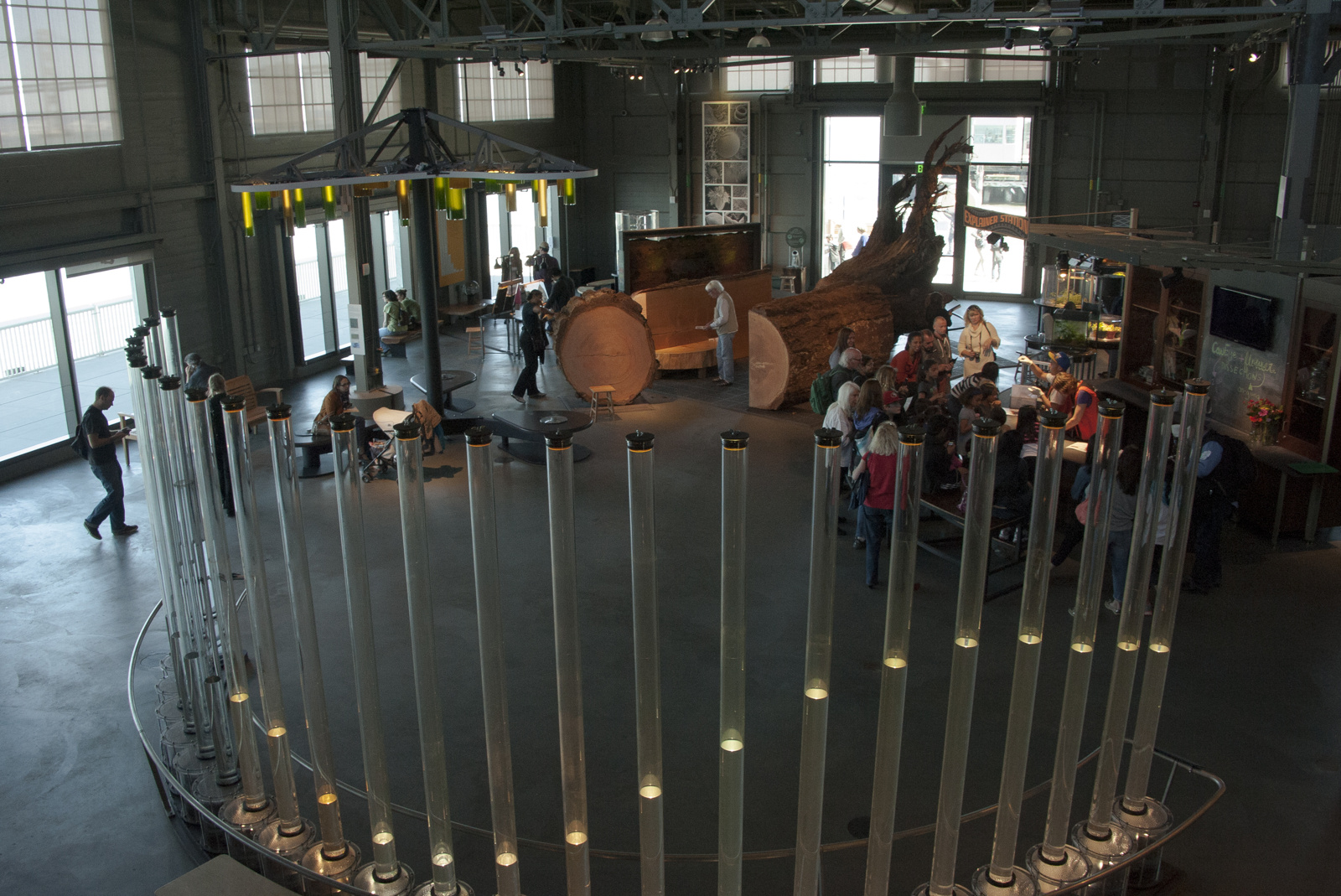 Tidal Memory exhibit at Exploratorium in San Francisco, 24 columns of water reflecting the tide in the SF Bay for the previous day